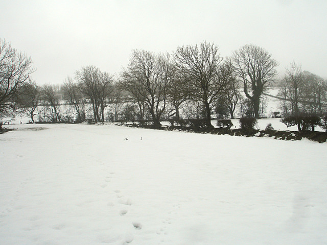 Footpath in the snow