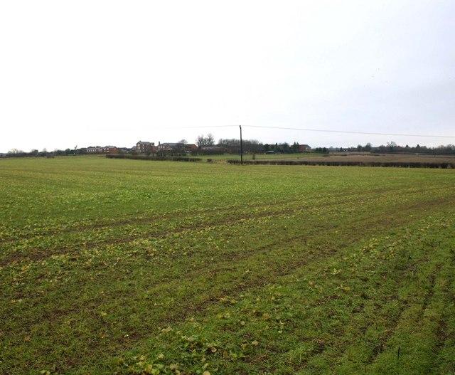 Fields South of Weston under Wetherley