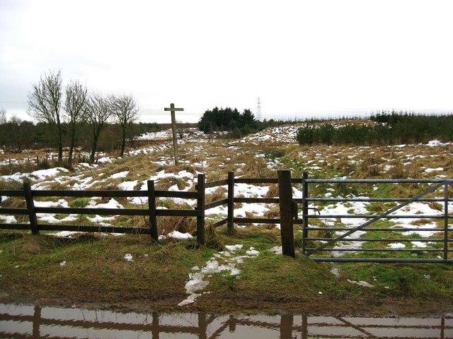 Glenhead Woodland Walk