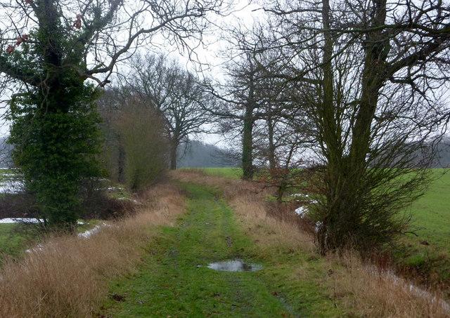 Waddlegoose Lane