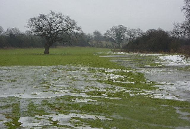 Field with icy patches
