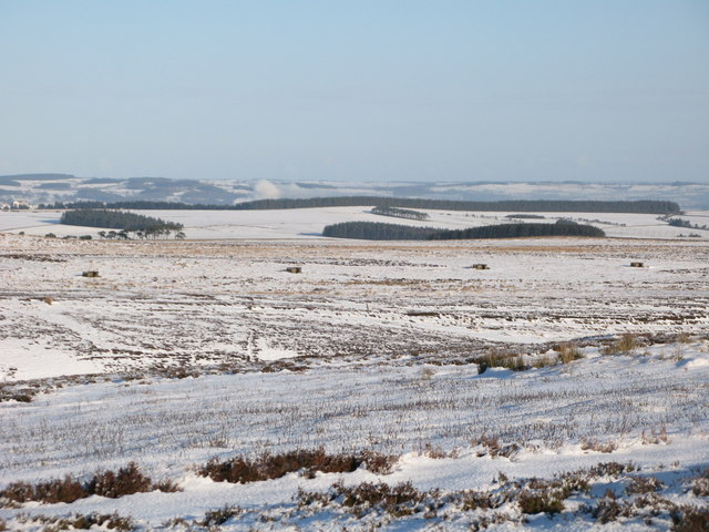 The snowy cleugh of Lawsley Sike west of Hunter's Ford