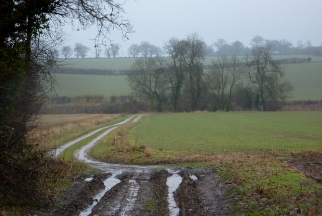 Track towards Thorpe Lane
