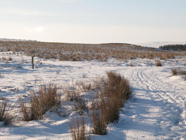 Snowy moorland east of Glen Hill