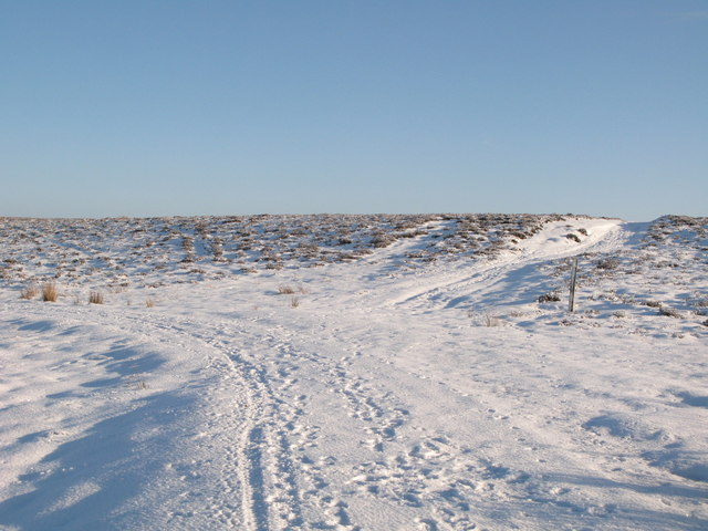 Junction of snowy tracks southwest of Crawberry Hill