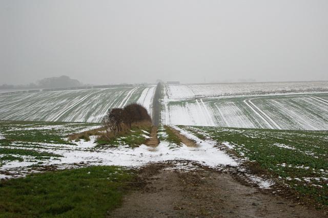 The Track to Barton Hill Farm