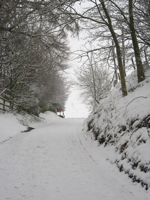 Lonkley Bank in the snow (2)