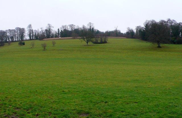 Countryside near Stepleton House