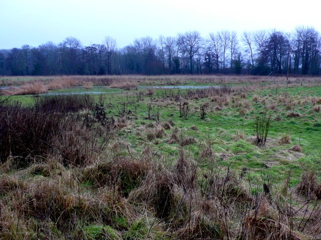Waterlogged fields by the River Stour