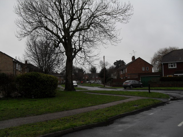 Looking from Canterbury Road into Allangate Drive