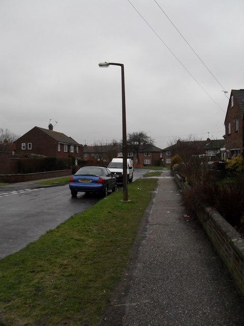 Lamppost in Allangate Drive