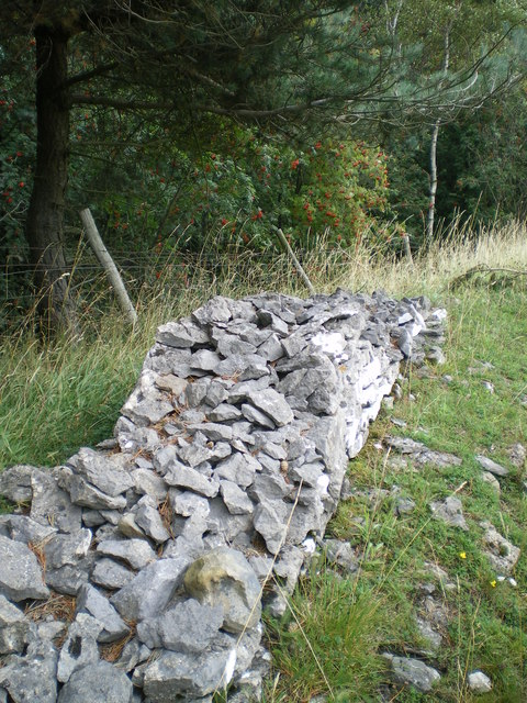 Dry stone wall seen better days - Wensleydale