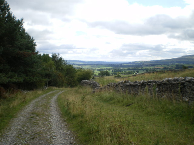Track from Thornton Rust Moor - Wensleydale