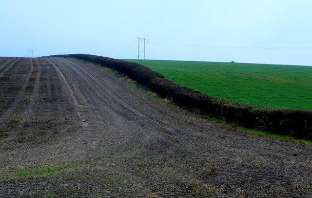 Fields near Normandy Farm
