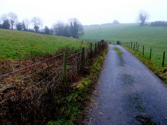 Farm Track at Winterborne Clenston