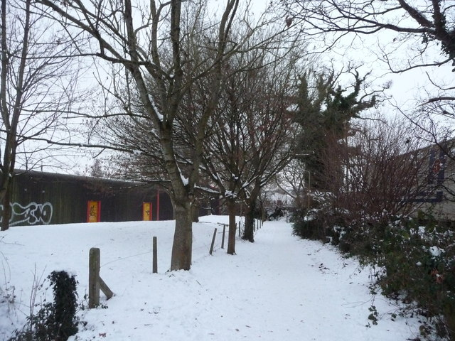 Tiverton : Snowy Path