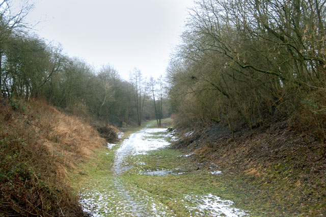 Dismantled railway trackbed in cutting north of Stockton