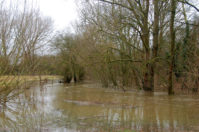 River Itchen in flood at Long Itchington (6)