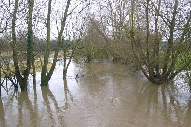 River Itchen in flood west of Stonebridge Lane