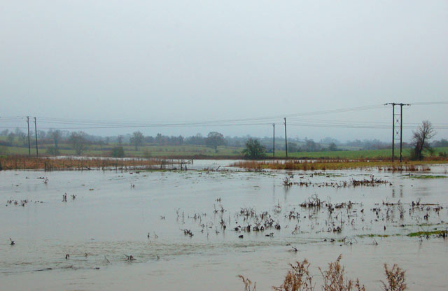 Wash meadows along the River Itchen in flood