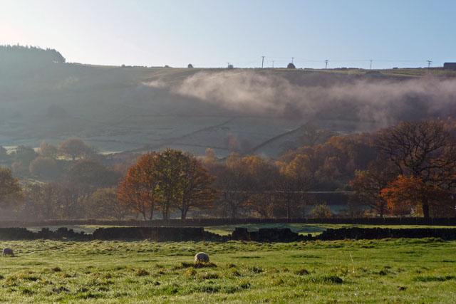 Fields near Wood top