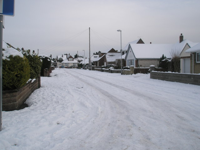 A snowy Court Mead