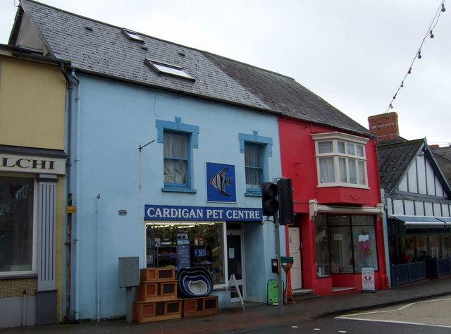 Pet shop, Aberteifi/Cardigan