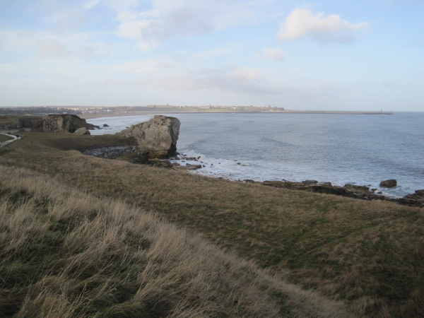 View towards Trow Point