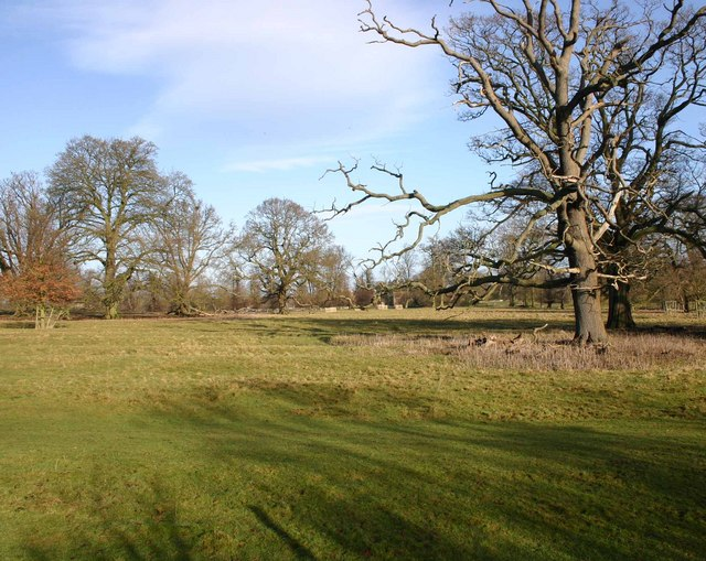 Charlecote Deer Park from the Stratford Road