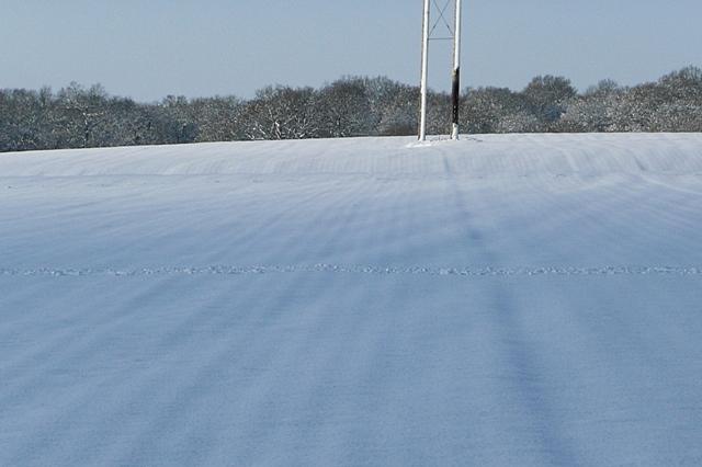 Fields west of Morgaston Wood
