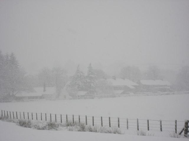 Shilburn in a blizzard