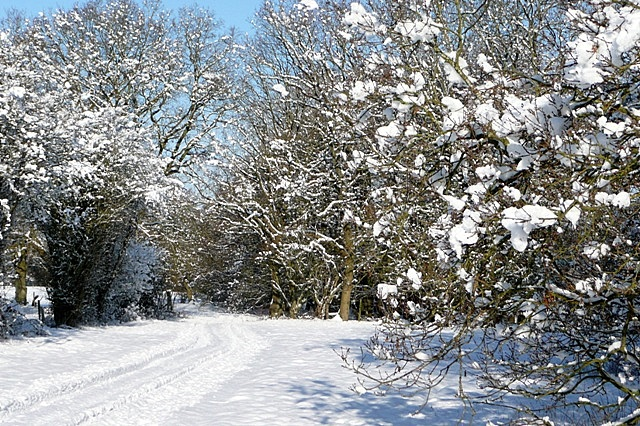 Path towards Hill End Farm
