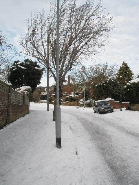 Heavy snow in East Cosham Road