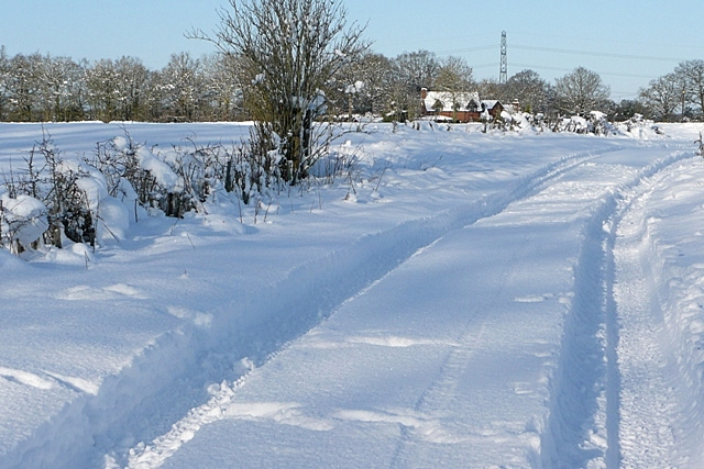Path towards Pamber Farm