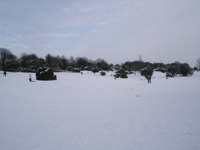 A snowy scene on Portsdown Hill