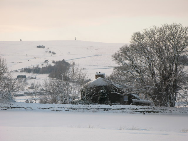 Snowy pastures near High Scotch Hall