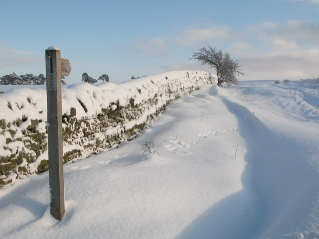The start of the (snowy) track to the moor