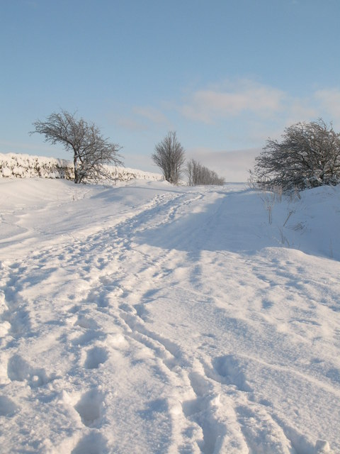 The start of the (snowy) track to the moor (2)