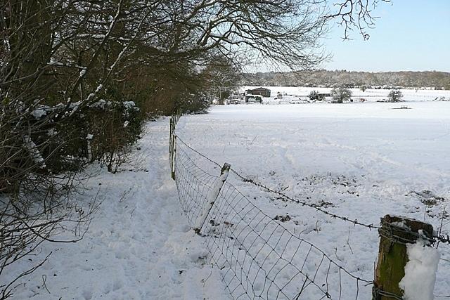 Path towards Boars Bridge Farm