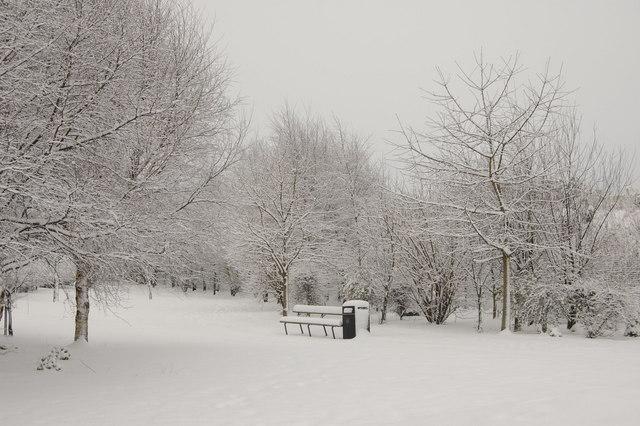 Winter Worlds... (Dyce Community Garden)