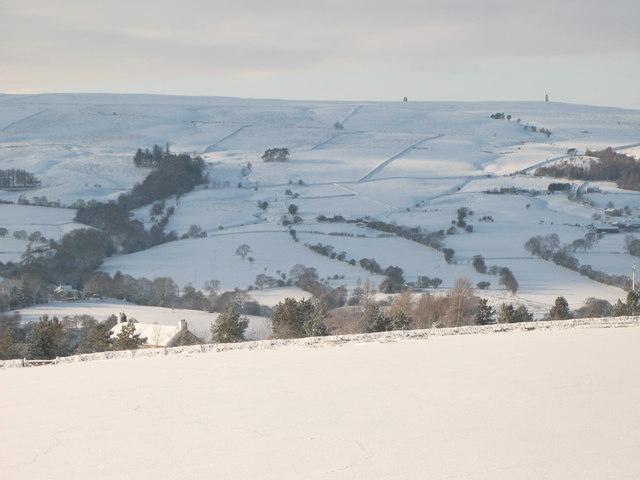 Snowy pastures in East Allen Dale