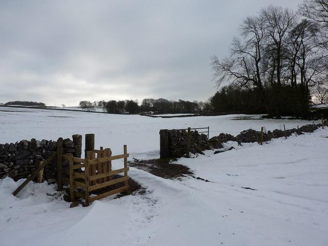 High security gate in field near Biggin