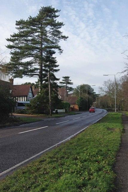 A129 in Hutton