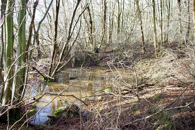Iron ore pit, Furnace Wood