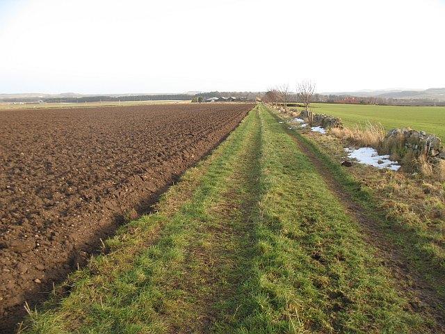 Killduff - Lammerview track
