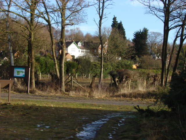 New England Hill, Brentmoor Common
