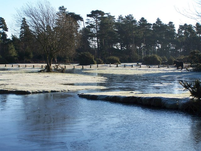 Janesmoor Pond, frost