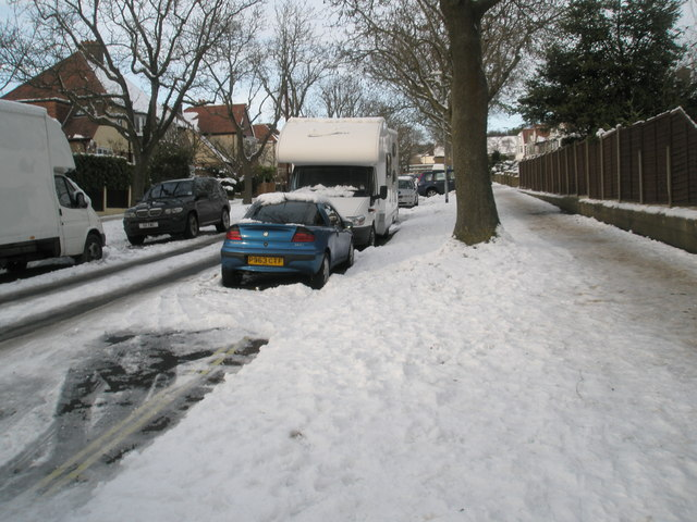 A snowy verge in Penarth Avenue
