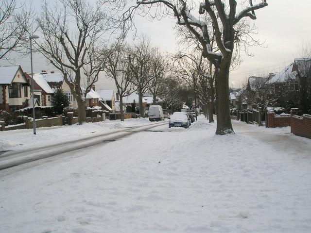 Looking down a snowy Penarth Avenue