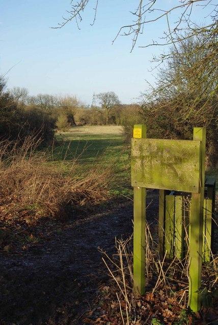 Hutton Park View